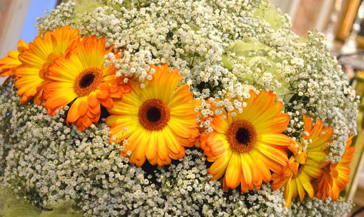 Fiori per matrimonio brescia la bottega del fiore for Fiori con la l