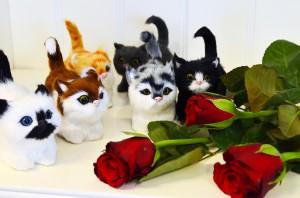 San Valentino (6)