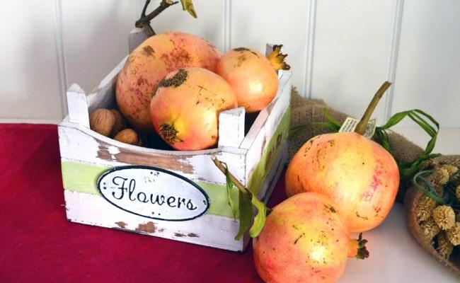 composizione floreale con frutta in stile autunnale (7)