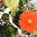 matrimonio con gerbere (2)