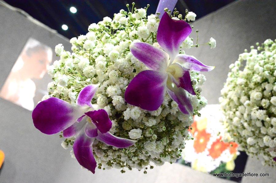 sfera orchidee e gisofila (4)