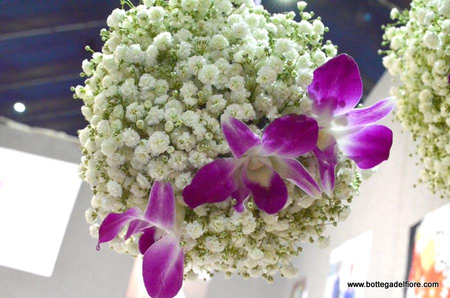 sfera orchidee e gisofila